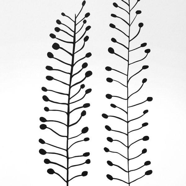Botanischer Druck Ackertäschelkraut, Recyclingpapier, STUDIO KARAMELO | botanical print