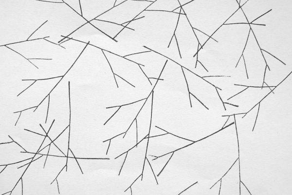Stempel Zweig – rubber stamp branch