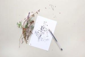 Winterliche Zweige Tusche-Zeichnung   ink drawing winter sprigs