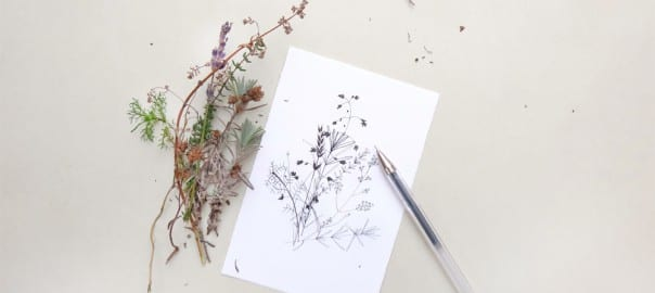 Winterliche Zweige Tusche-Zeichnung | ink drawing winter sprigs