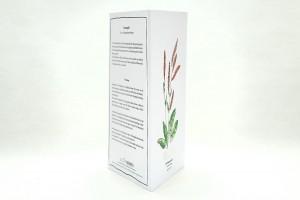 Wegesrandkraeuterkarte Sauerampfer für die Kräuterwanderung   greeting card with wild herbs common sorrel  studiokaramelo