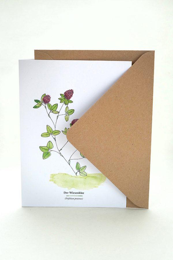 Wegesrandkraeuterkarte Wiesenklee für die Kräuterwanderung   greeting card with wild herbs red clover  studiokaramelo
