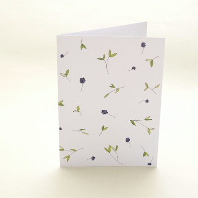 florale Grußkarte Liguster   Greeting Card privet   studiokaramelo