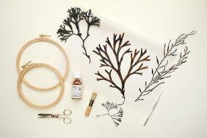 DIY gepresste Blumen im Stickrahmen | STUDIO KARAMELO | Pressed Flowers in tambour frame
