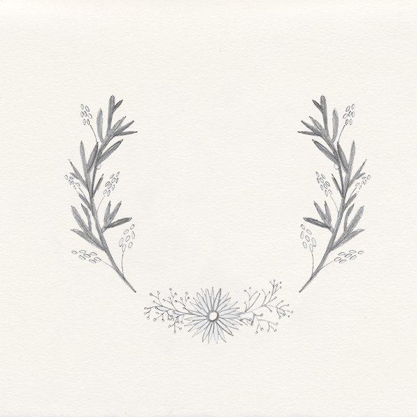 Botanische Illustration, Ranke, floral twine, botanical illustration | STUDIOKARAMELO