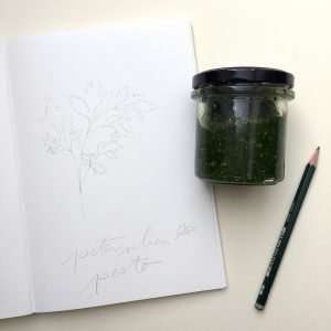 Petersilienpesto, Petersilie Illustration | STUDIO KARAMELO | parsley illustration sketchbook