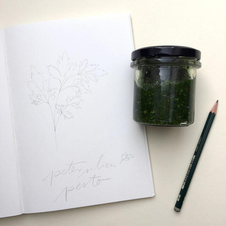 Petersilienpesto, Petersilie Illustration | STUDIO KARAMELO | parsley illustration sketchbook