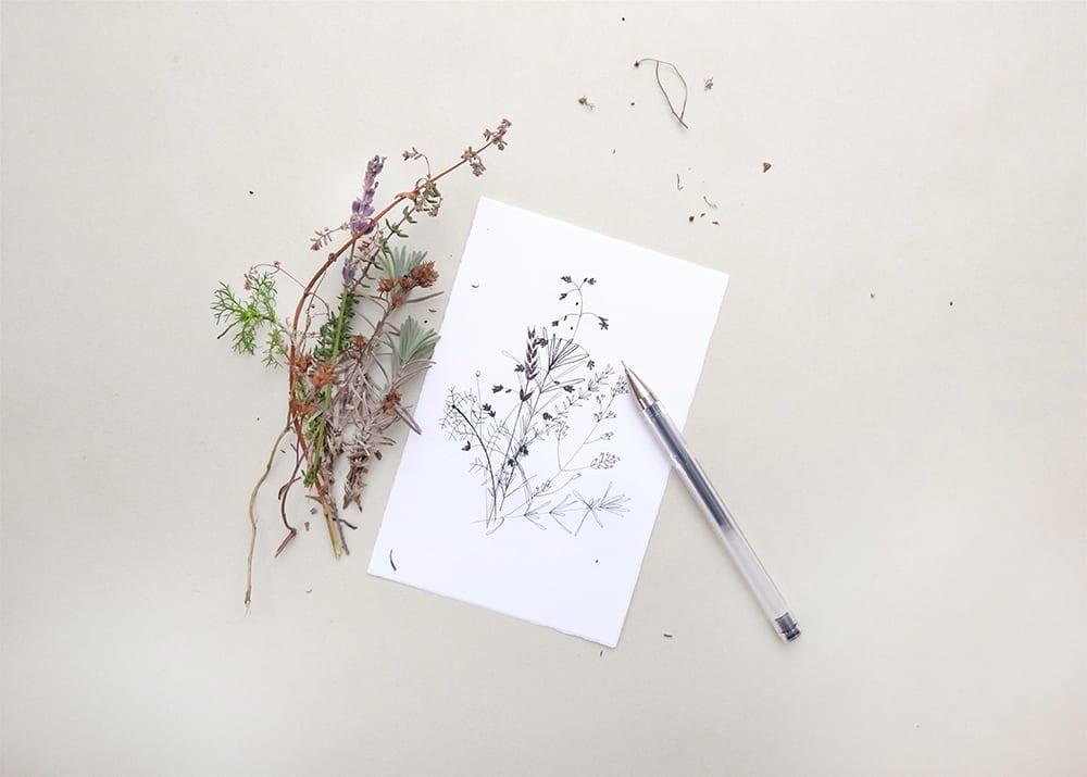 Botanische Zeichnung,Zweige, botanical drawing, branches, sketchbook | STUDIOKARAMELO