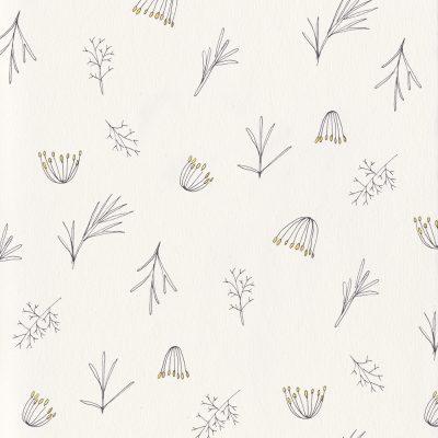 Botanische Illustration, florales Muster, Tapete, Dill, floral pattern, wedding, botanical illustration | STUDIOKARAMELO | Illustrationen Pflanzen für Logo, Branding, Produktverpackungen, Hochzeiten