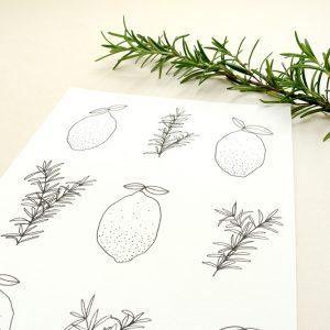Zitrone Rosmarin Illustration Sirup Küche | STUDIO KARAMELO