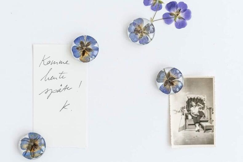 Magnete mit gepressten Blüten, Veilchen Farn und Ringelblumen, Verlag freies Geistesleben