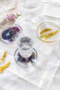 gepresste Blumen als Untersetzer |Veilchen, Farn & Ringelblumen – Gestalten mit gepressten PFlanzen, Verlag freies Geistesleben, Kathrin Bender