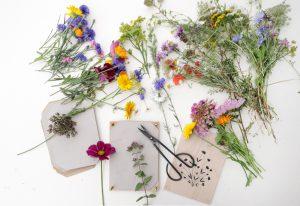 Wiesenblumen pressen, Blumen pressen, Anleitung | STUDIO KARAMELO