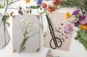 Wiesenblumen pressen, Blumen pressen, Anleitung   STUDIO KARAMELO