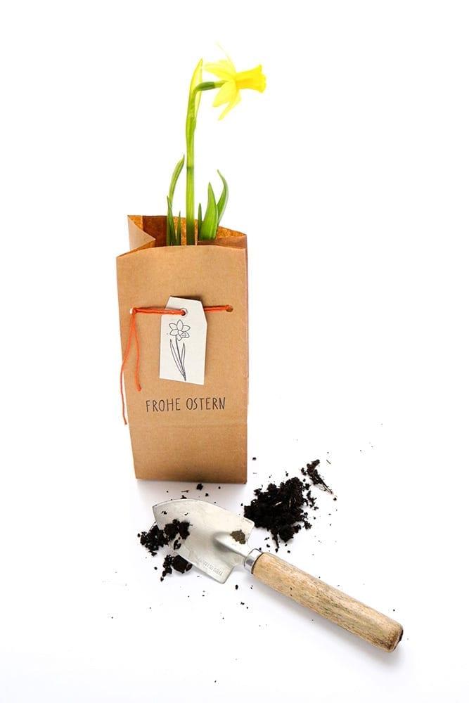 Osterglocken verschenken – Schmale Geschenktüten aus Kraftpapier STUDIO KARAMELO