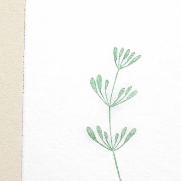 Stempelkissen Versacolor Oliv   ink pad olive